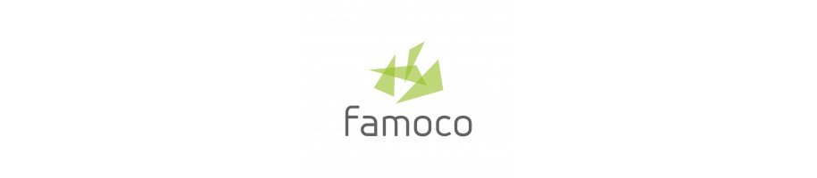 Famoco - Dispositif NFC pour B2B